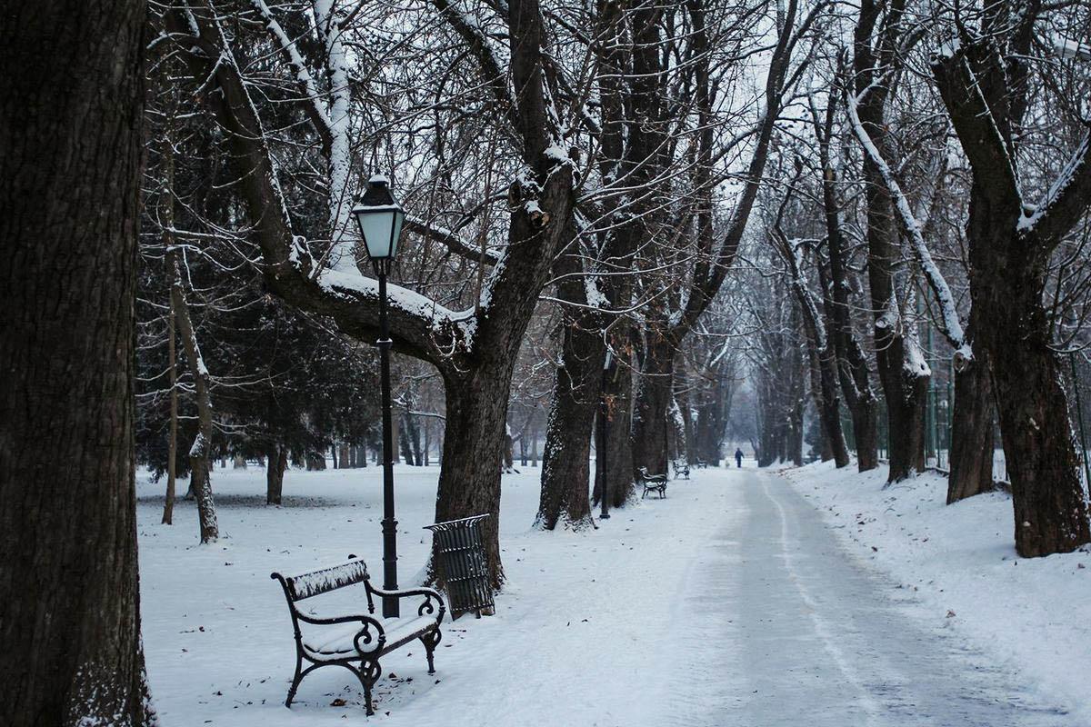 Zimski park  Foto: Andrea Ilakovac  Ključne riječi: Park Zima Snijeg Priroda
