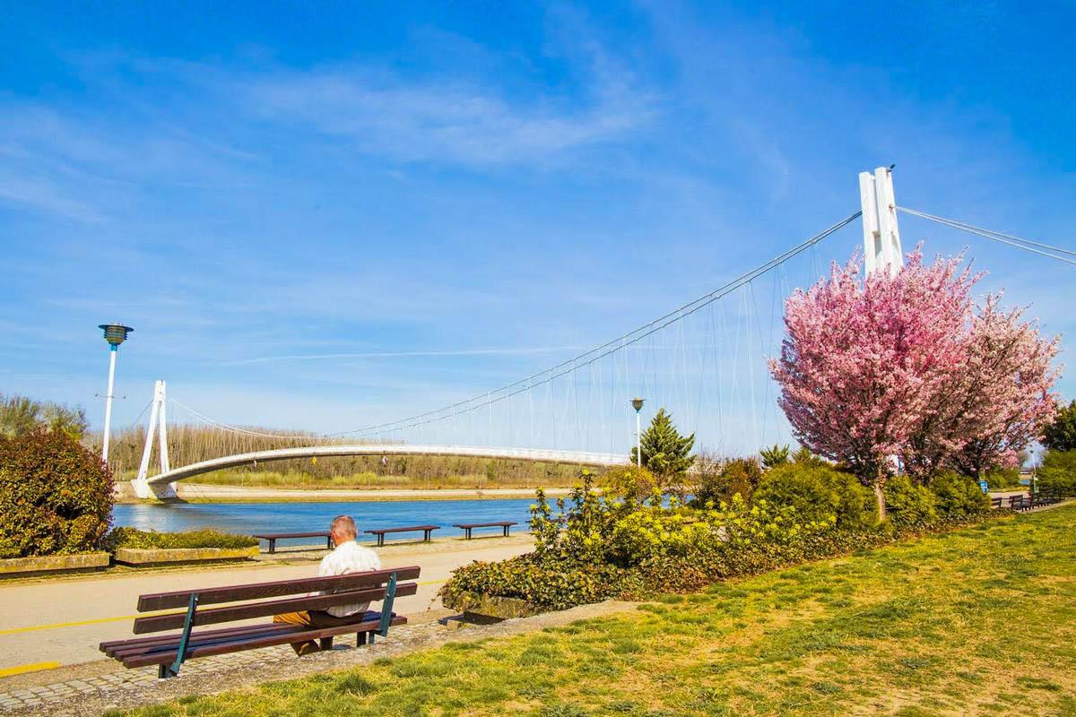 Proljeće je stiglo u grad!  Foto: Josip Stević  Ključne riječi: Proljece Drava Priroda Ljudi