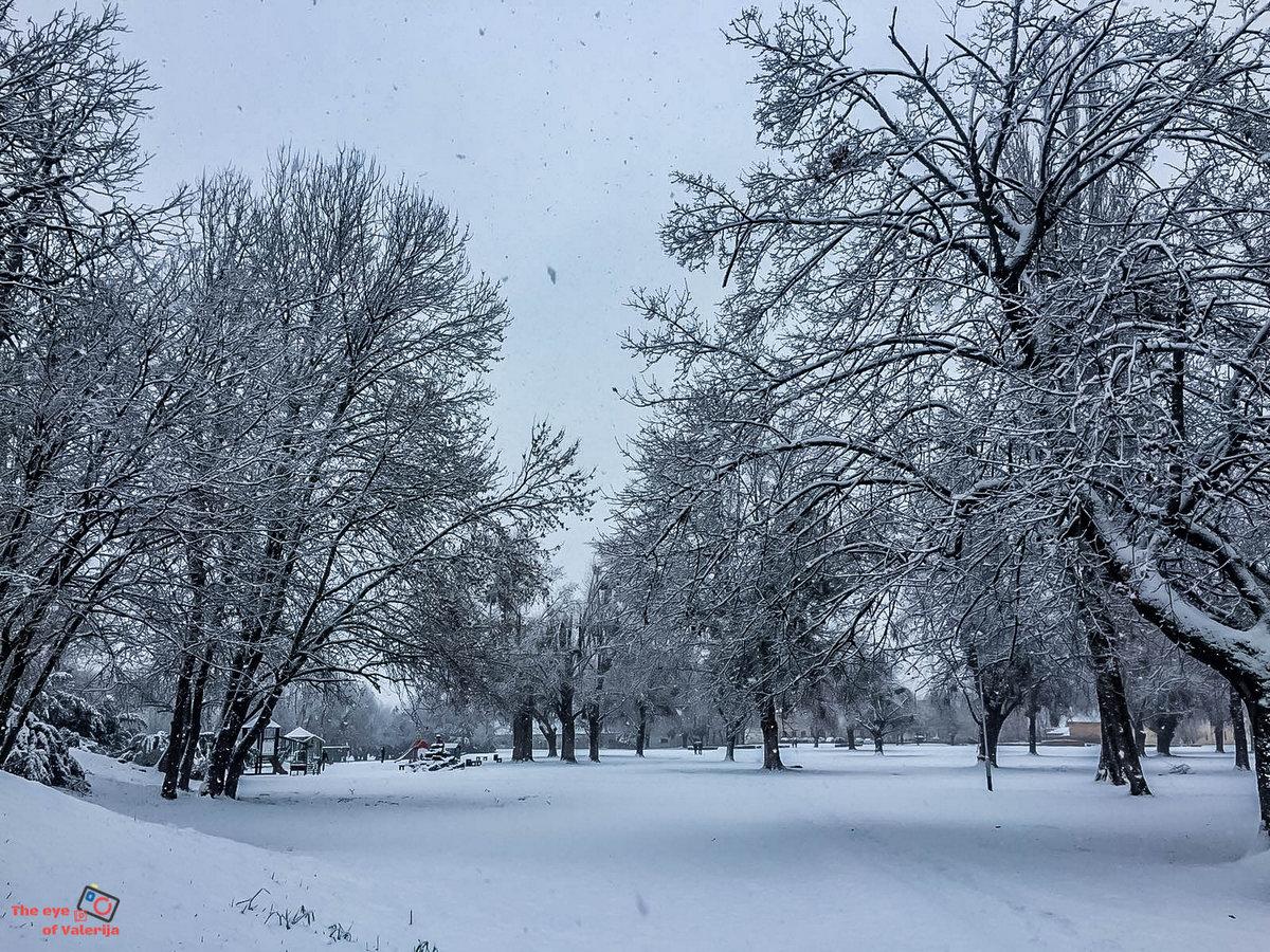 Snježna idila  Foto: Valerija Kepčija  Ključne riječi: Snijeg Park Priroda