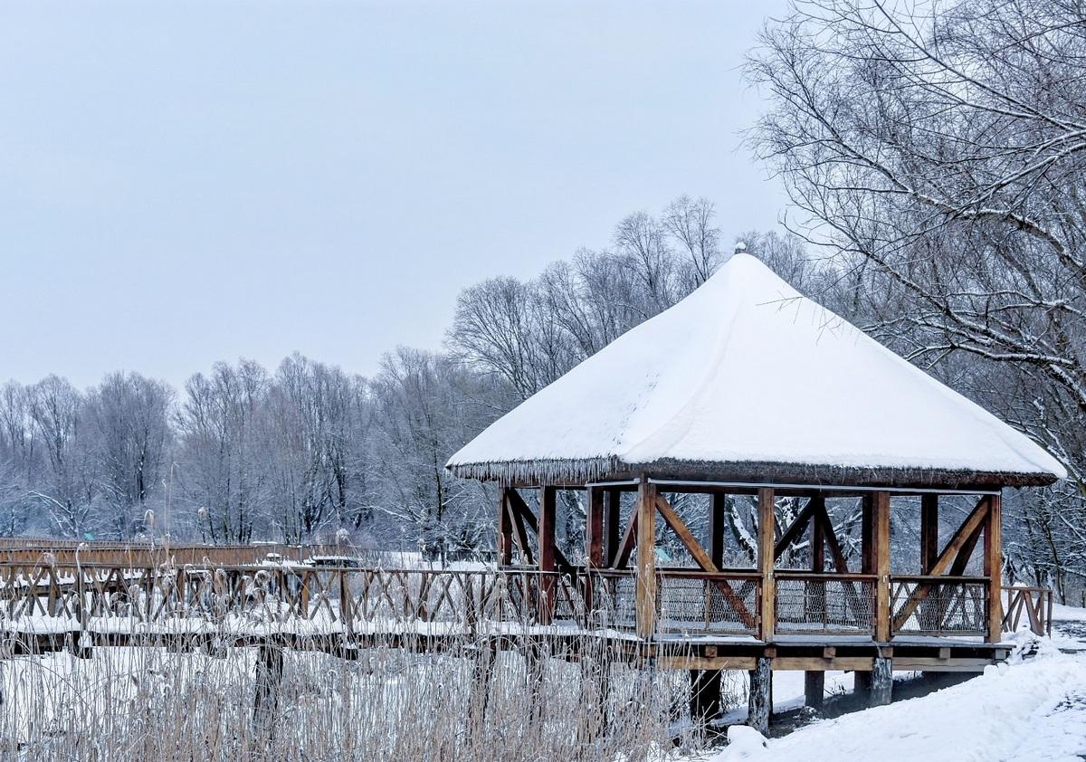 Park prirode Kopački rit  Foto: Marijana Savić  Ključne riječi: Kopacki Rit Snijeg Zima
