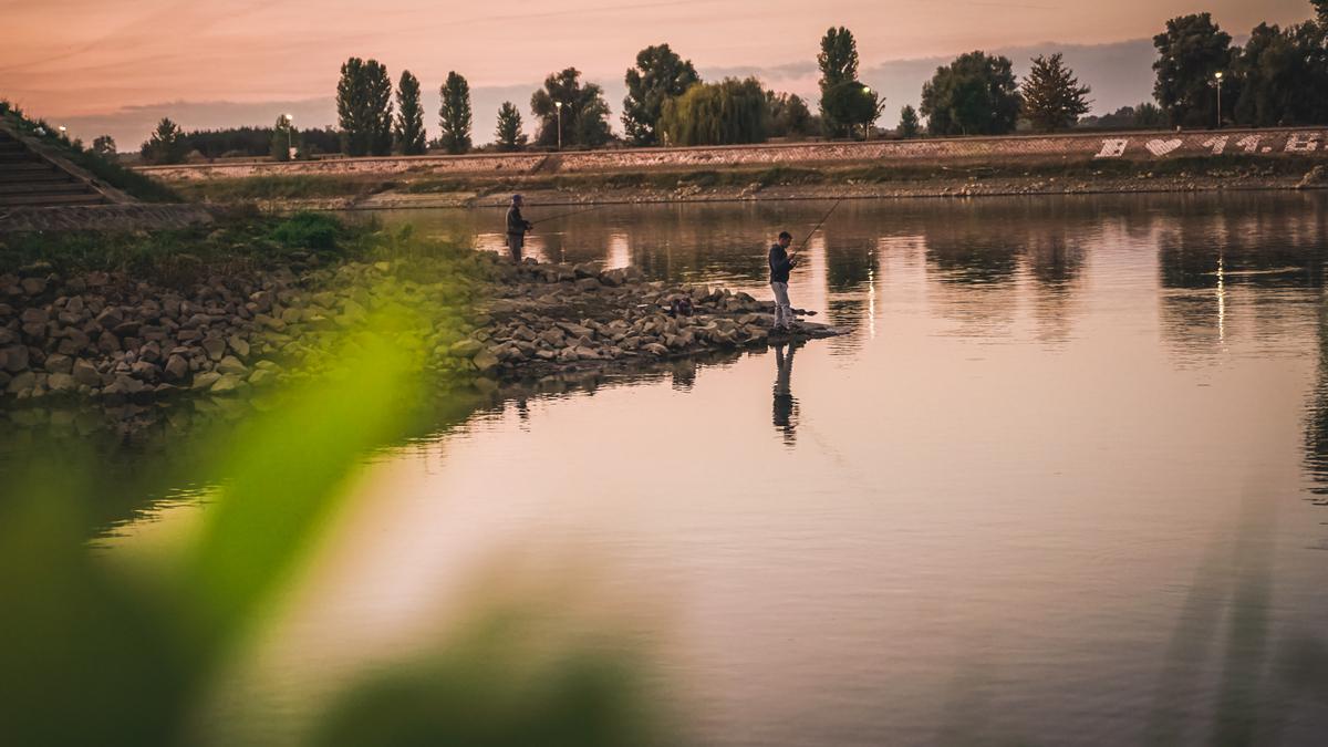 Pecanje  Foto: Vladimir Tolj  Ključne riječi: Drava Pecanje Riba Ljudi Zivotinje Priroda