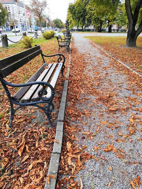 Osječki park  Foto: Mirta Salaj  Ključne riječi: Park Klupa Priroda Jesen
