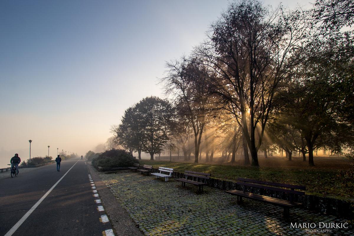 Sunčeva svjetlost  Foto: Mario Đurkić  Ključne riječi: Promenada Ljudi Priroda Drvece Sunceve zrake