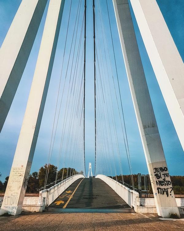 Na putu  Foto: Iva Pandurić  Ključne riječi: Most Drava Priroda