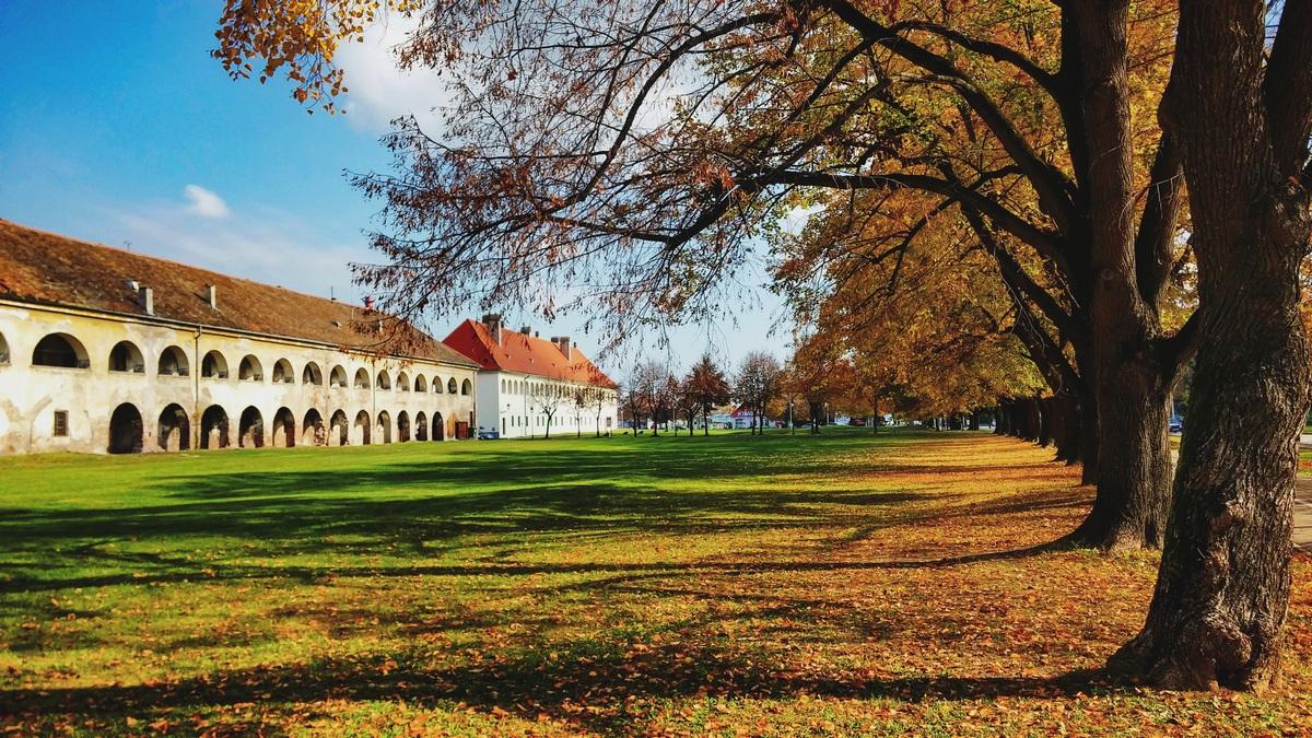 Osječka jesen vol. 2  Foto: Iva Pandurić  Ključne riječi: Jesen Priroda Tvrda