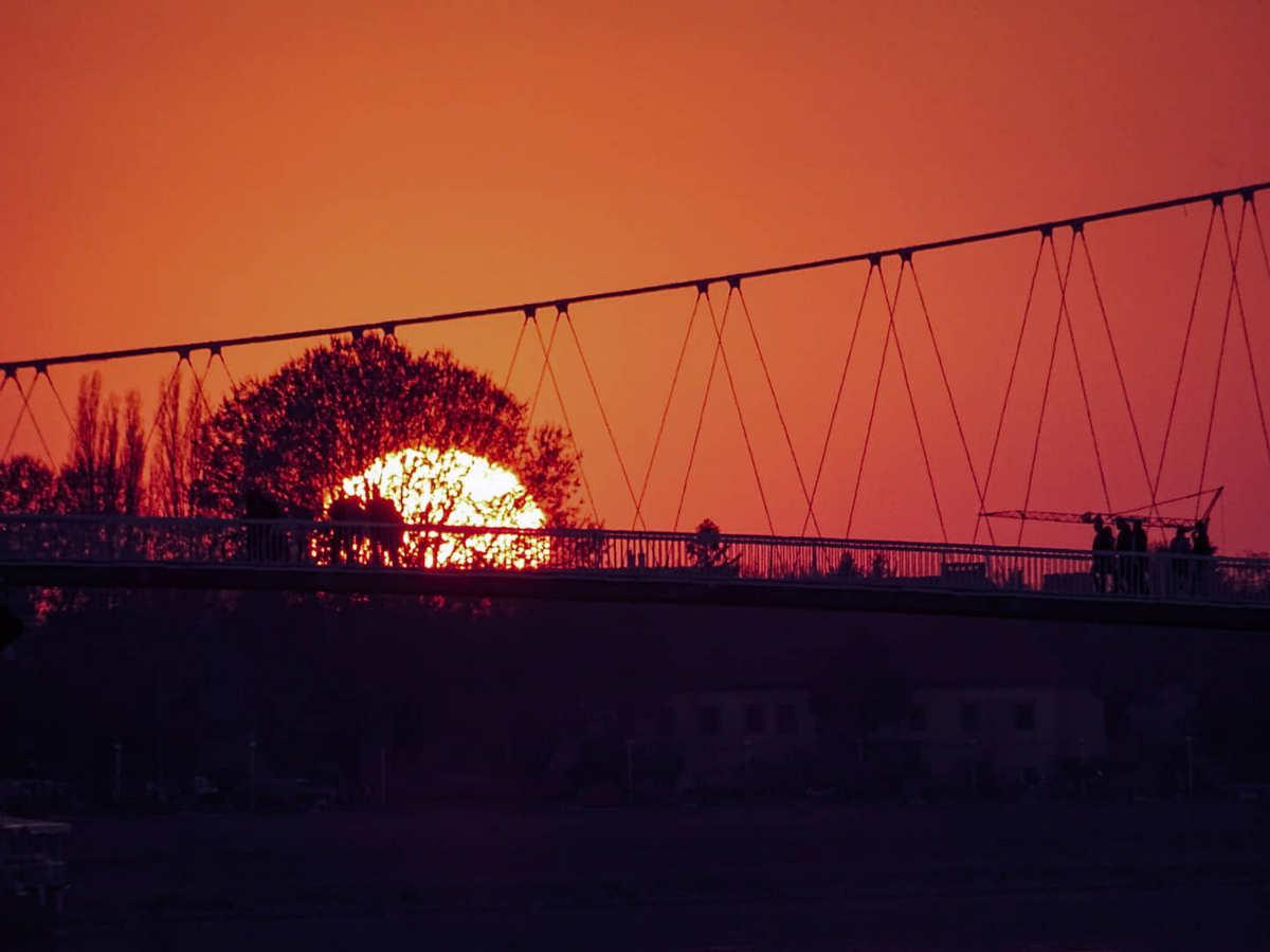 Laku noć  Foto: Ena Crnoja  Ključne riječi: Sunce Most Grad Priroda