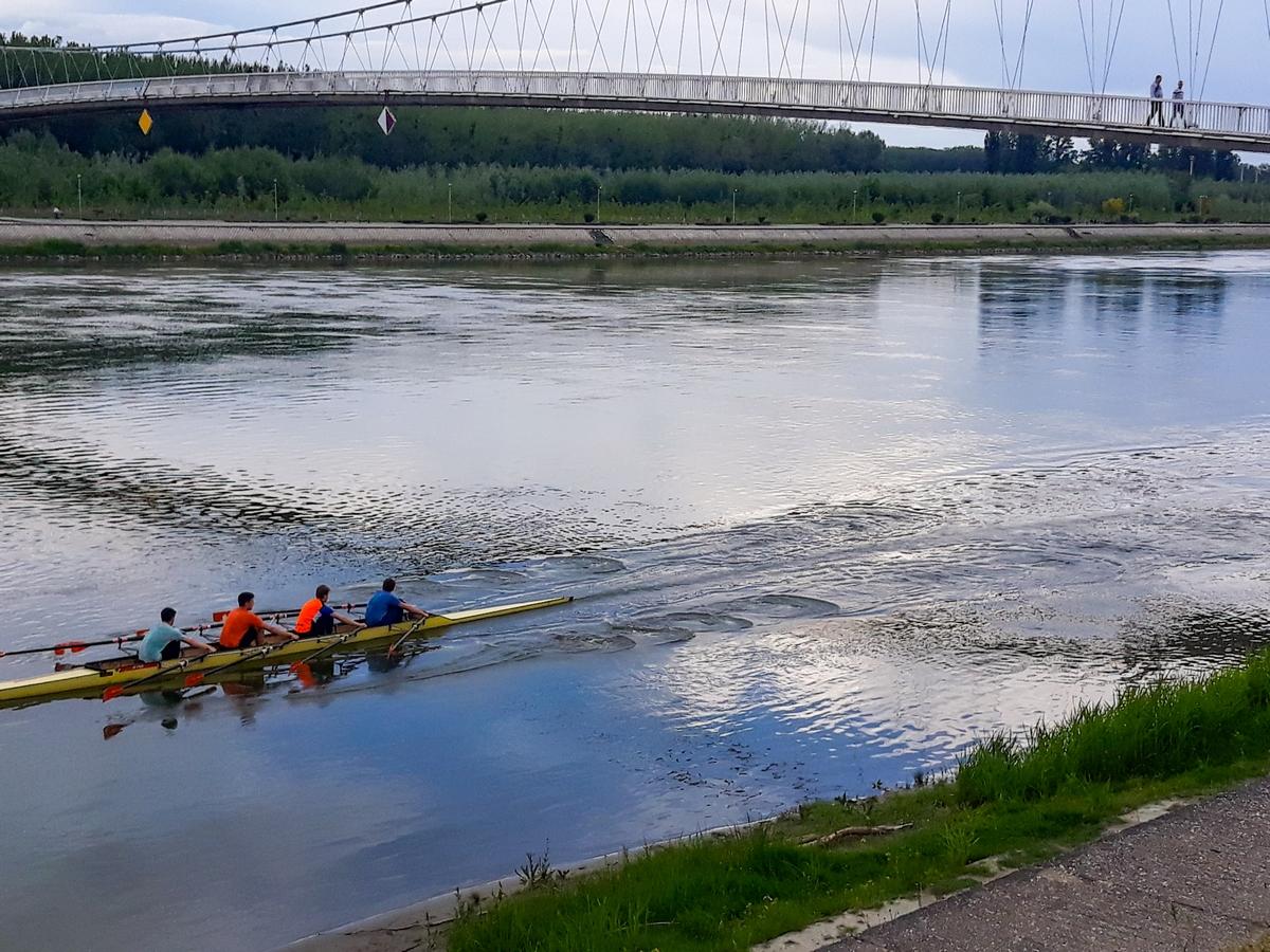 Veslači  Foto: Davor Molnar  Ključne riječi: Veslaci Drava Priroda Most