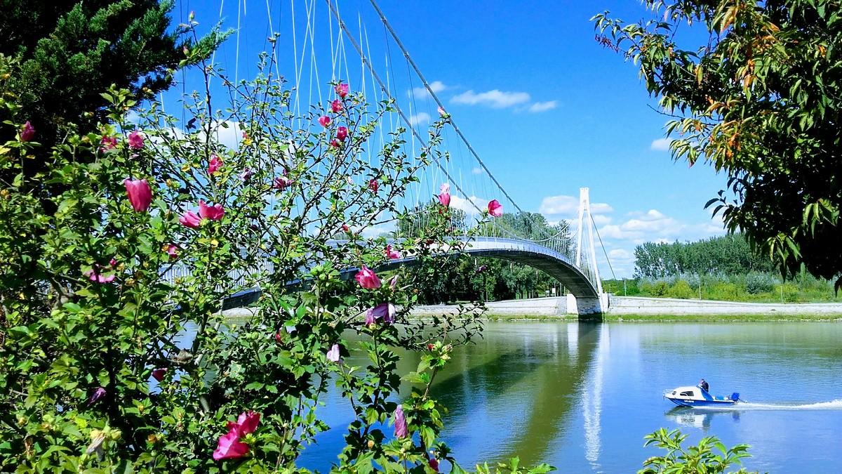 Proljetno vrijeme  Foto: Renata Mišetić  Ključne riječi: Proljece Drava Cvijece Most