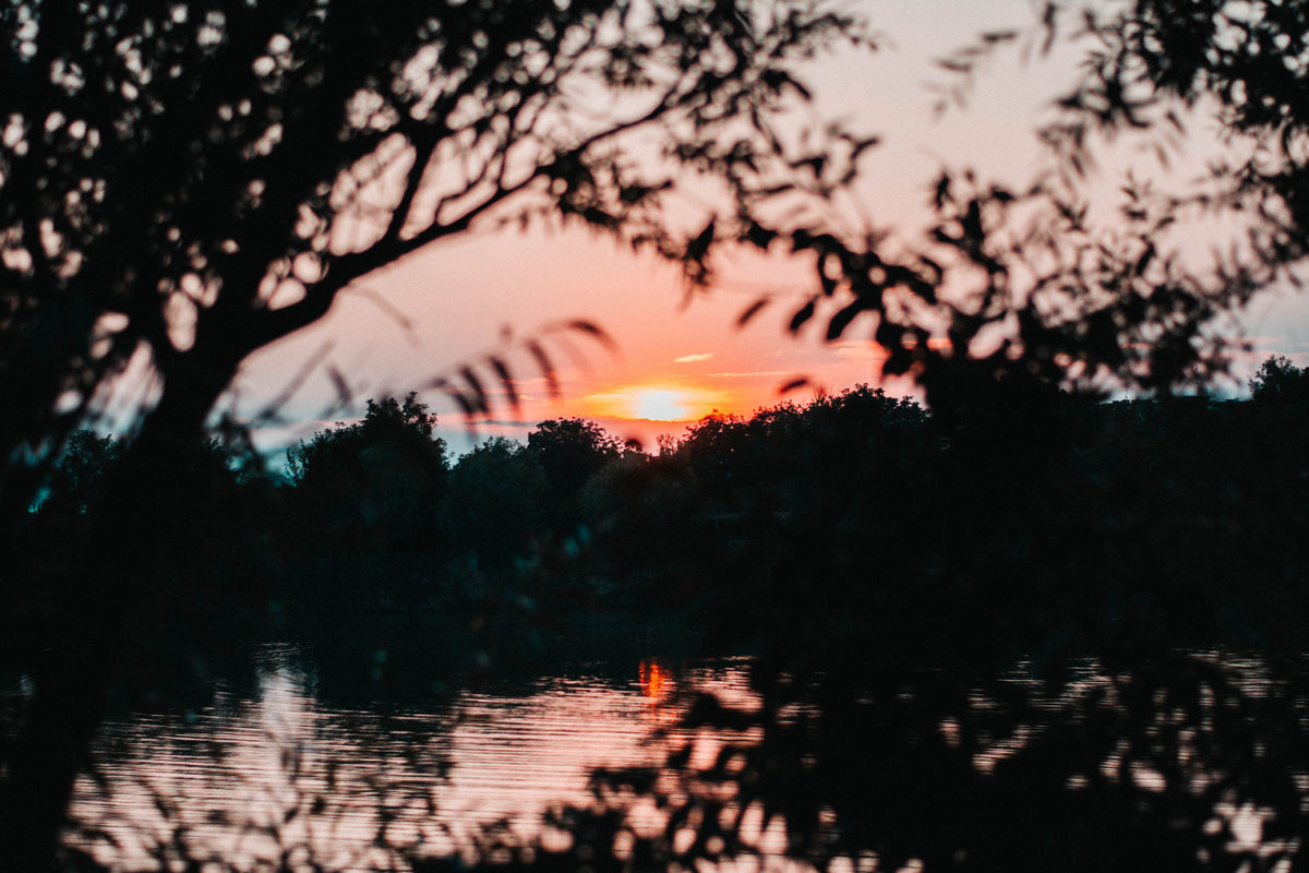Kroz grane  Foto: Stefan Španić  Ključne riječi: Zalazak Nebo Priroda