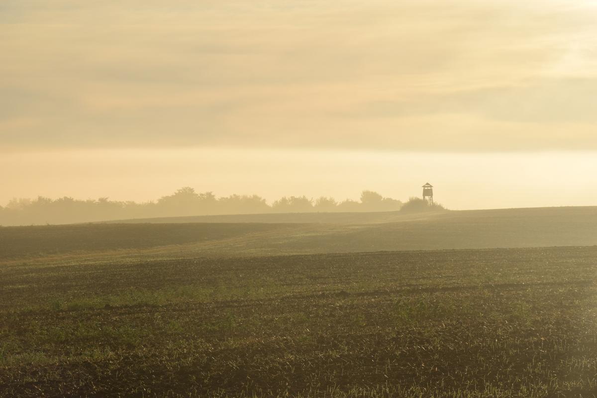 U daljini  Foto: Dominik Primožić  Ključne riječi: Magla Polje Kucica