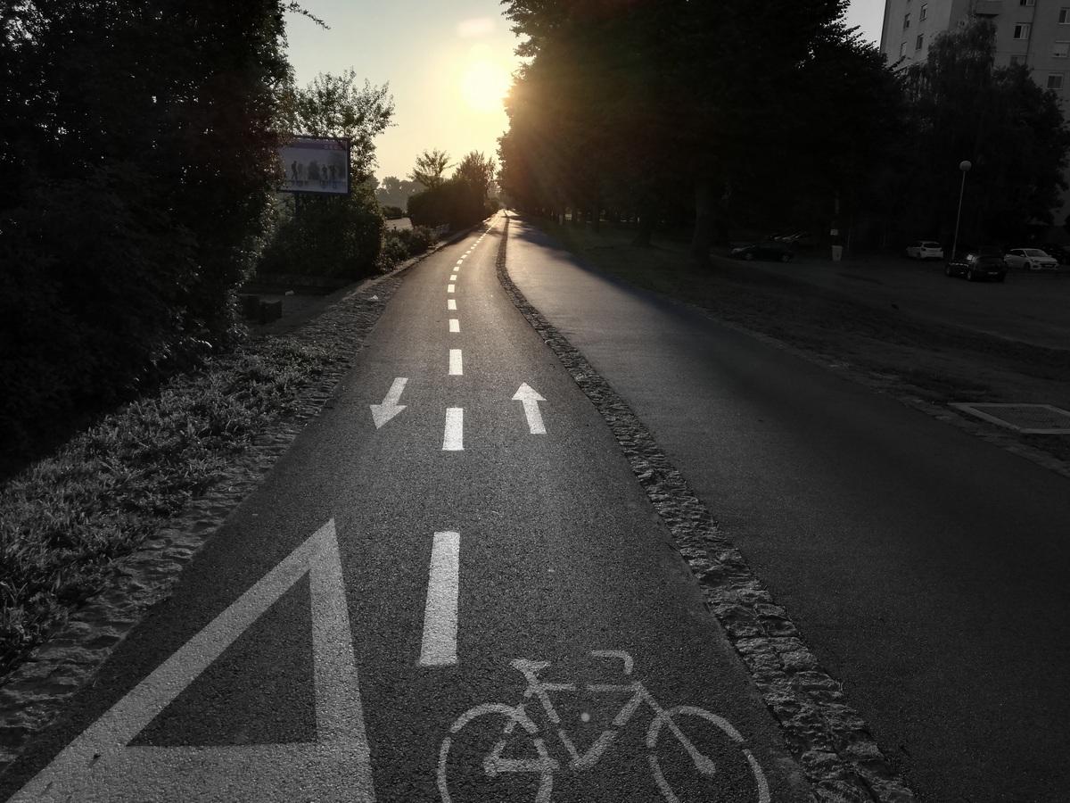 Biciklistička staza  Foto: Ana Pejin  Ključne riječi: Promenada Biciklisticka Staza Priroda