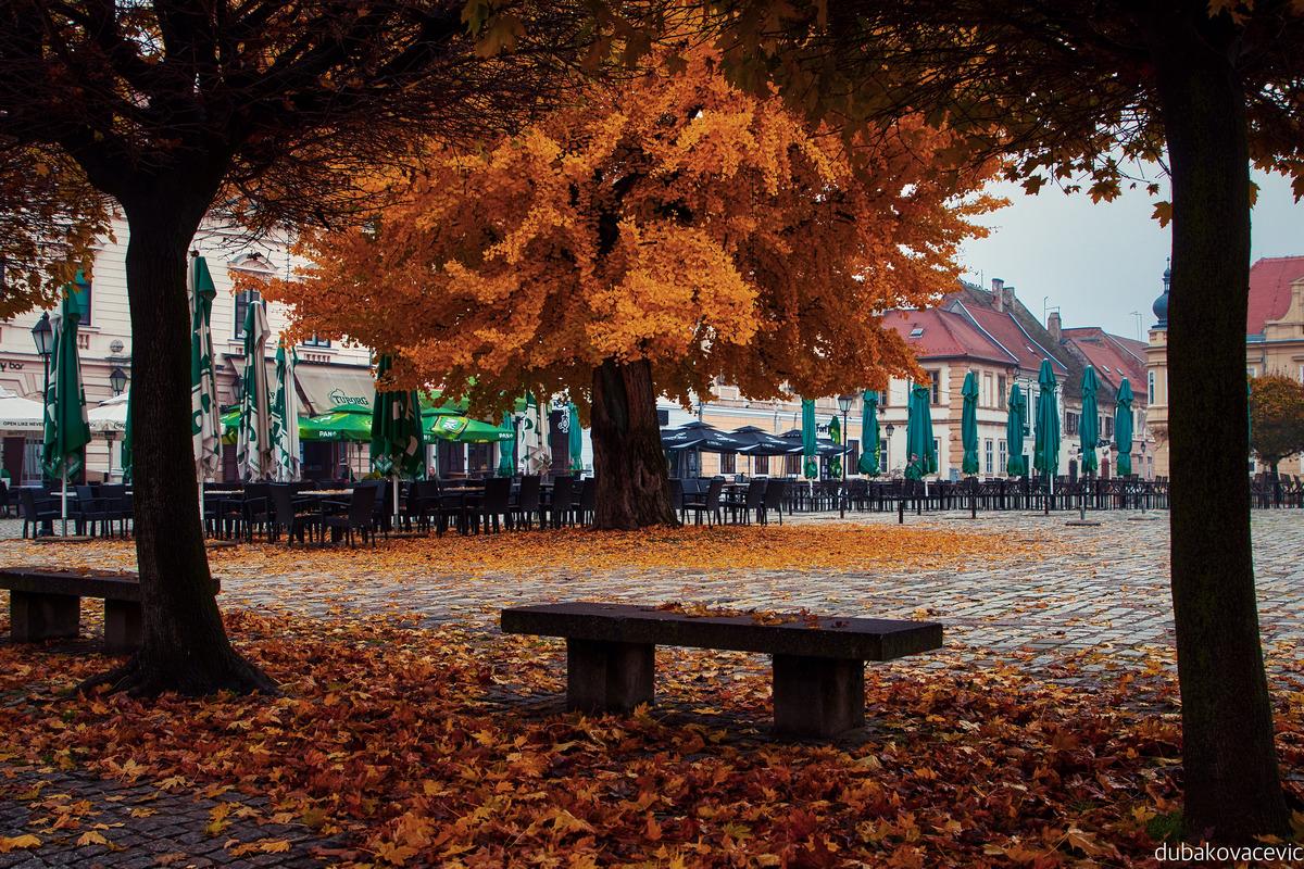 U Tvrđi  Foto: Dubravka Kovačević  Ključne riječi: Tvrda Jesen