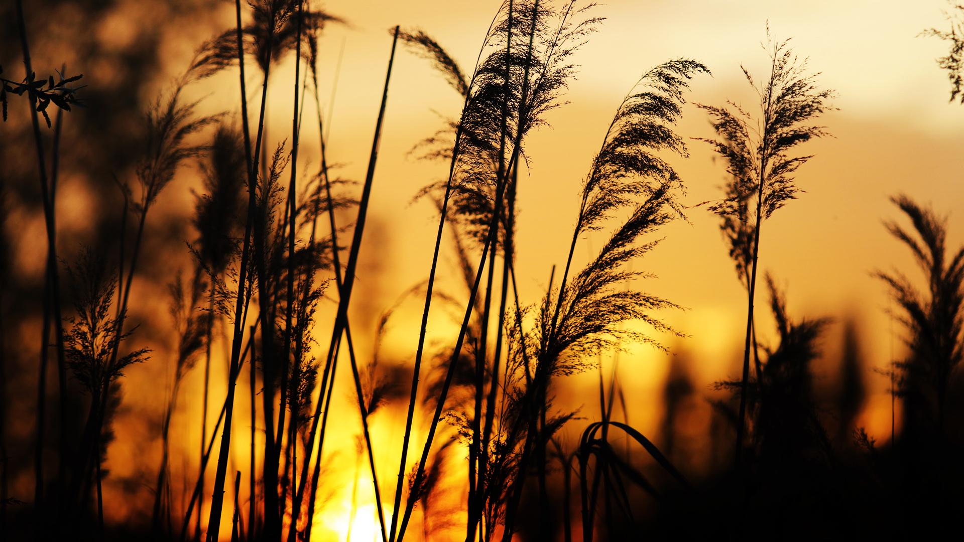 Zalazak  Foto: Domagoj Buljan  Ključne riječi: zalazak sunce