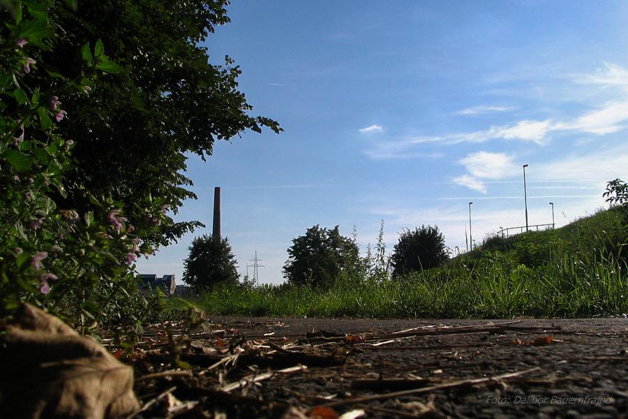 Biciklistička staza - Podravlje  Foto: Dalibor Bauernfrajnd  Ključne riječi: biciklisticka staza bicikl podravlje most drava