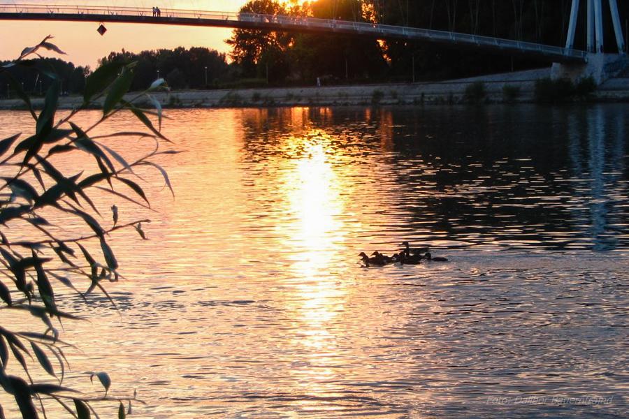 Zalazak ispod mosta..  Foto: Dalibor Bauernfrajnd  Ključne riječi: zalazak sunca sunce patke drava most