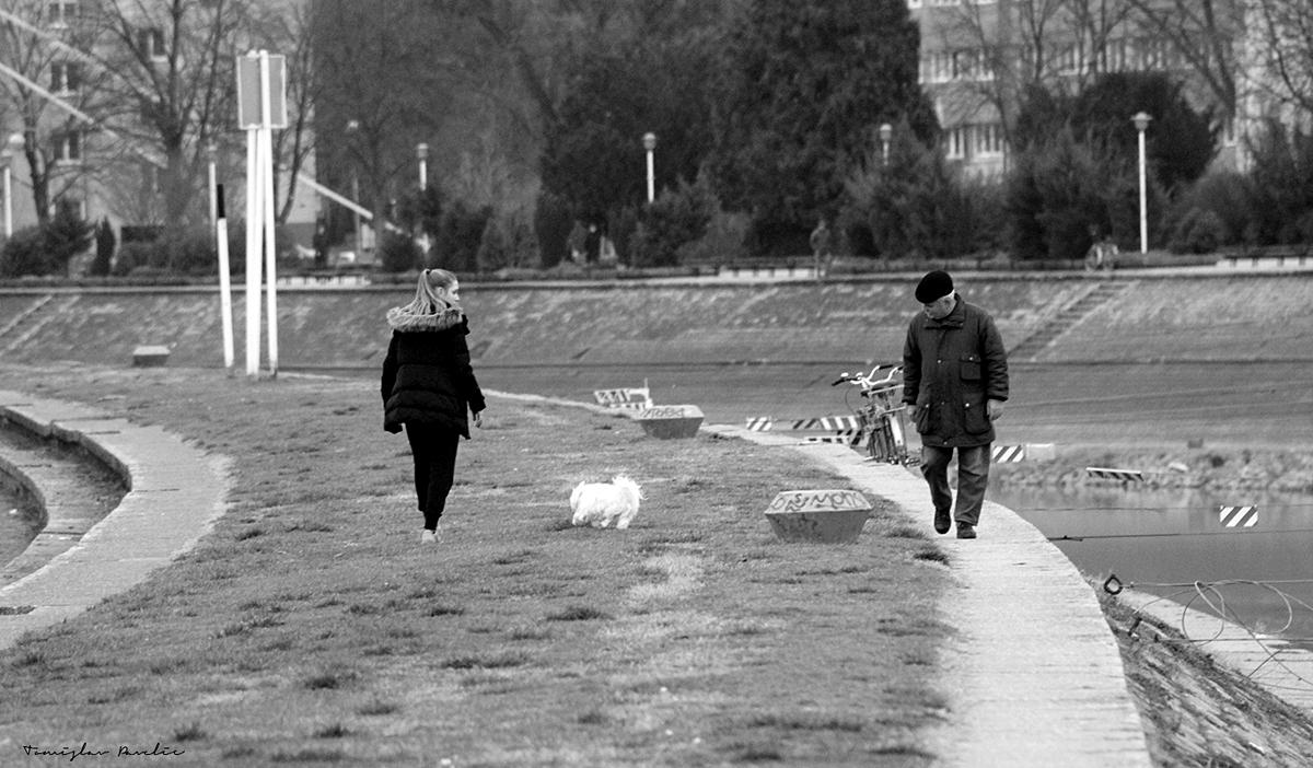 U šetnji  Foto: Tomislav Pavelić  Ključne riječi: setnja c&b crno bijelo b&w drava zimska luka