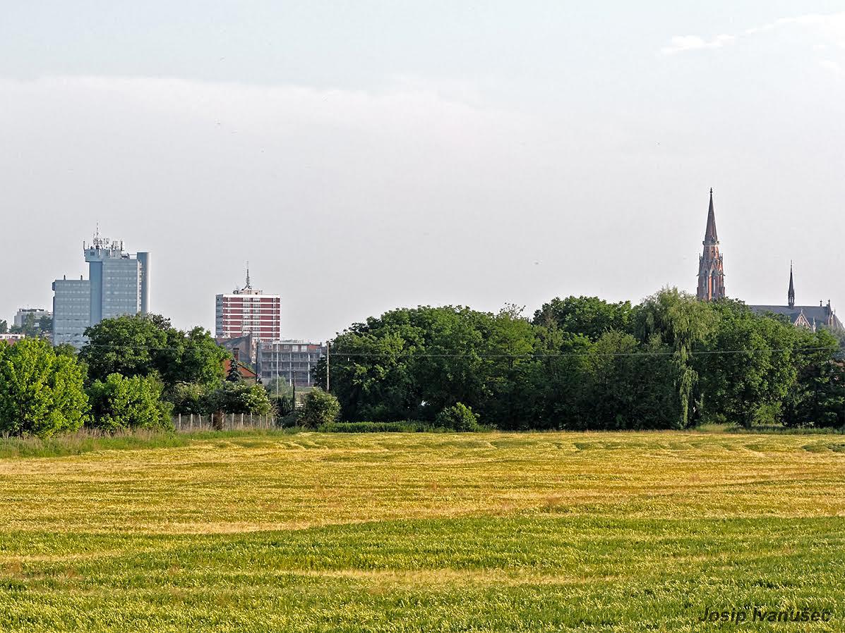 Polje u gradu  Foto: Josip Ivanušec  Ključne riječi: polje grad