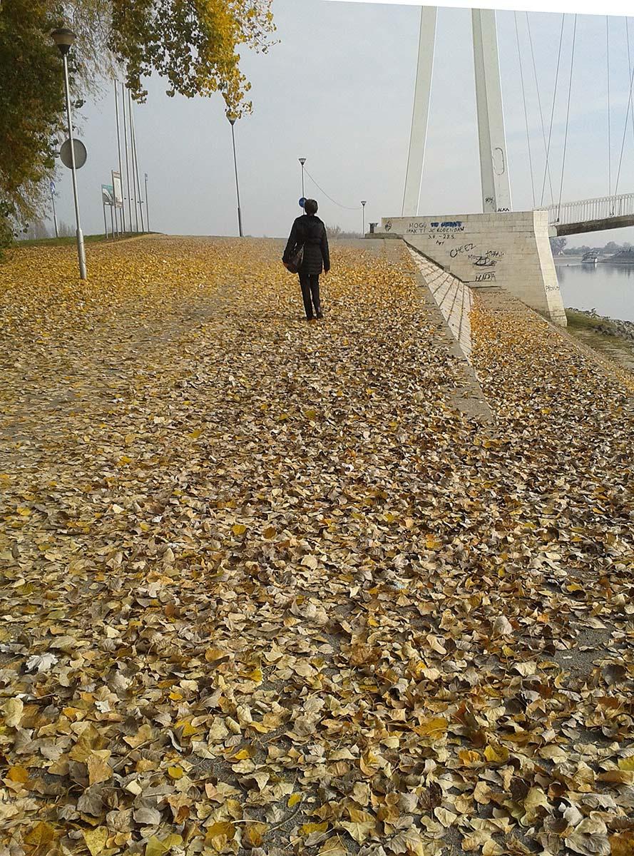 Šetnja  Foto: Sonja Tot  Ključne riječi: setnja lisce most drava