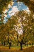 2012_11_24_jesen_cutunic_031.jpg
