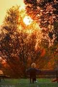 2015_11_03_pozdrav_suncu_tomislav_pavelich_031.jpg