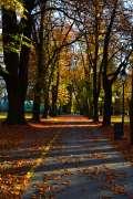 2015_11_12_jesen_u_parku_kristina_demeter_031.jpg