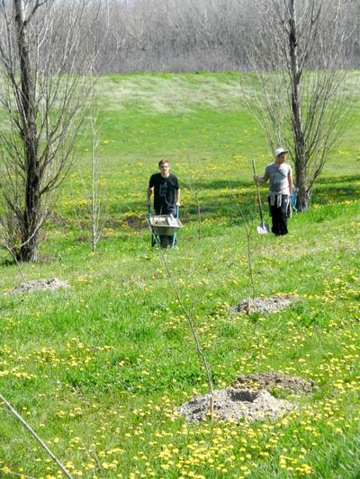 Slavonski Botanicki Vrt Uz Lijevu Obalu Drave